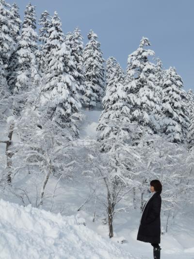 2012.12.17ラビスタご飯12