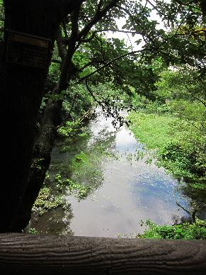 2012_0804水の旅0027