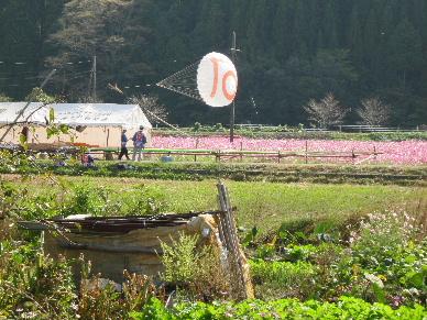 2012_1020大龍~勢0074
