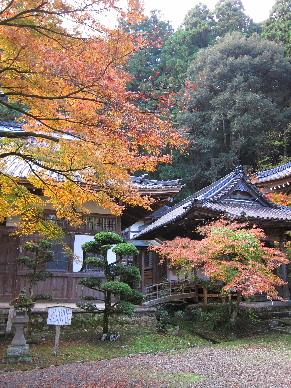 2012_1125紅葉の森へ0018