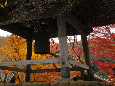 2012_1202韮山修善寺0124