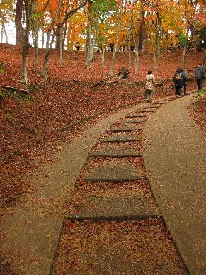2012_1202韮山修善寺0070