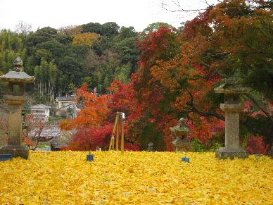 2012_1202韮山修善寺0020