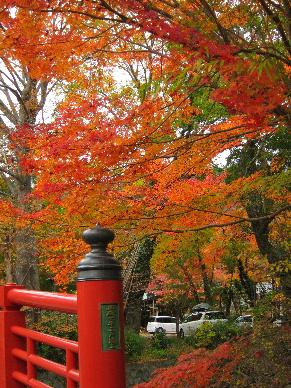 2012_1202韮山修善寺0136