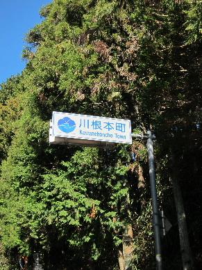 2012_1216川根か?0022