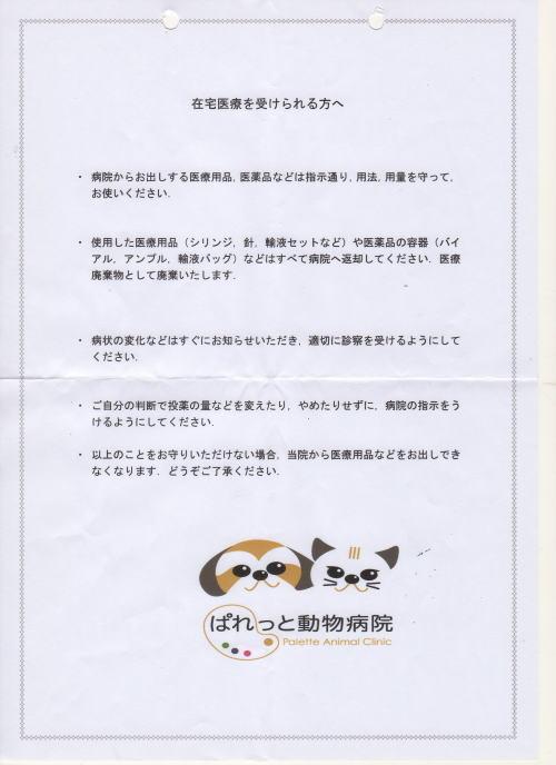 ぱれっと動物病院パンフ125