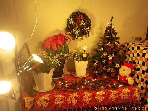 2012.11. クリスマスツリー①