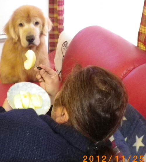 2012.11. 意地悪たくちゃん