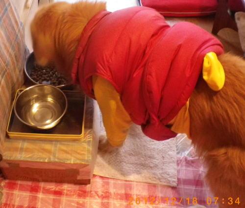 2012年12月18日 食事スタート