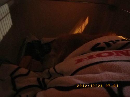 2012年12月21日 004