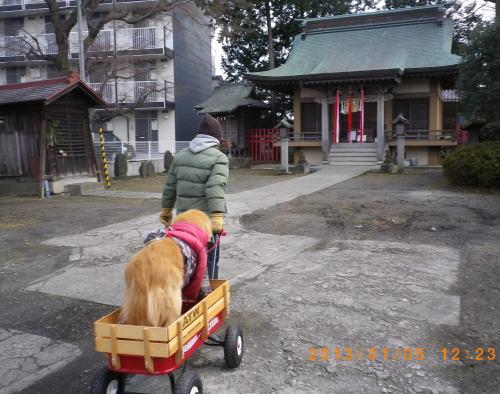 2013年1月5日のラヴィンと3人で初詣①.jpg