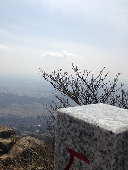 写真 2013-04-01 12 22 59