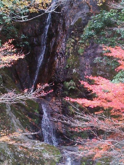 滝と紅葉  大内山にて