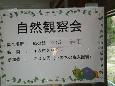072_20121215202013.jpg
