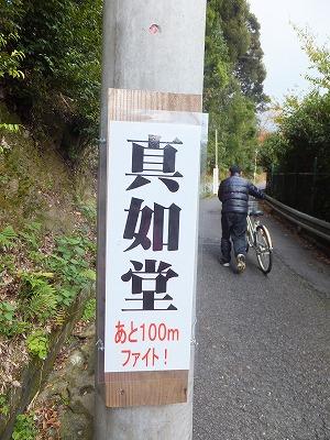 105_20121120194522.jpg