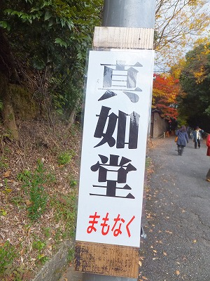 107_20121120194619.jpg