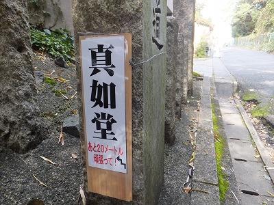 123_20121120195607.jpg