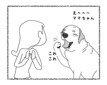 羊の国のラブラドール絵日記シニア!!「おかえり!クロエちゃん」3