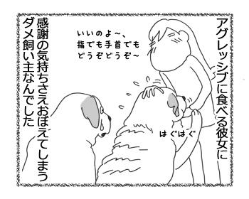 羊の国のラブラドール絵日記シニア!!「シニアの印籠」4