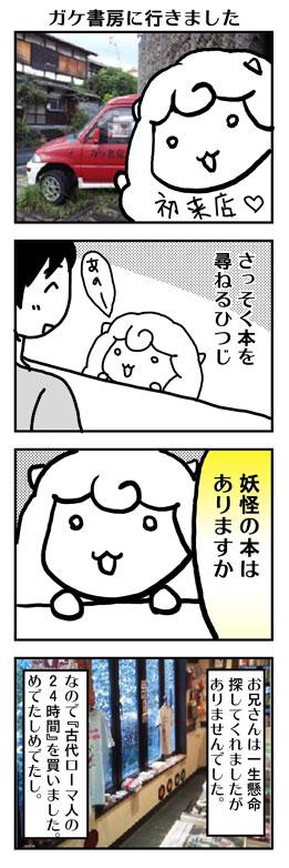 hs4.jpg