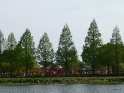 つつじが岡公園(つづき)5