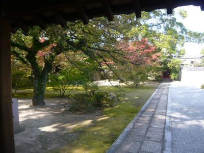博多・祇園の寺院巡り36