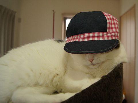 みーたんの帽子