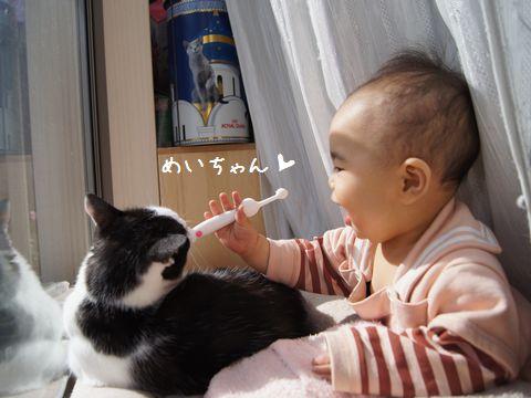 歯ブラシにおう?