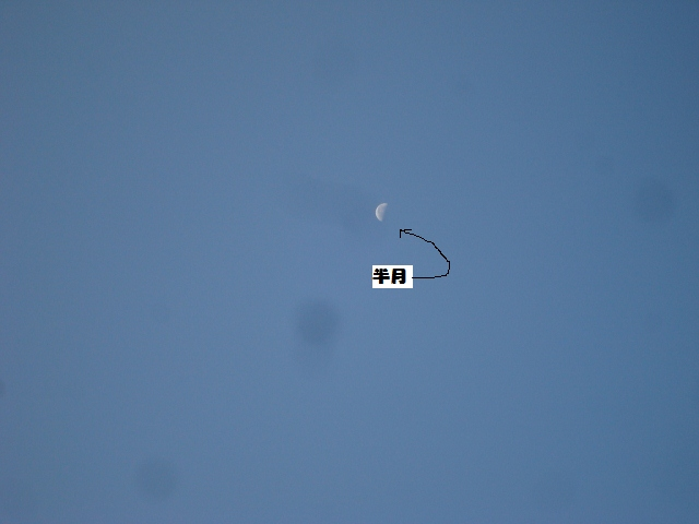 2012.11.7半月 (640x480)