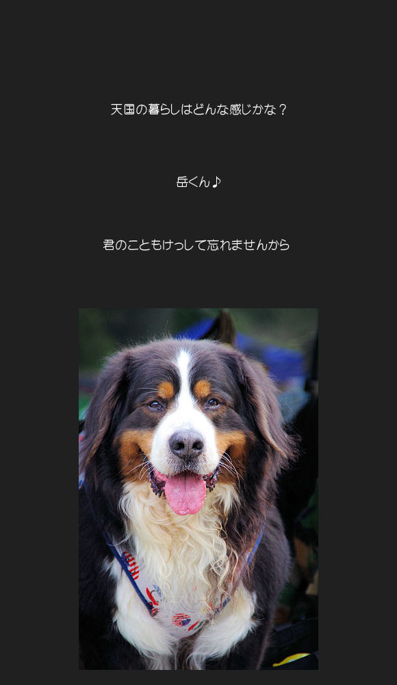 ASH☆最終日♪♪