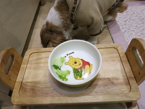 食事中のふたり5
