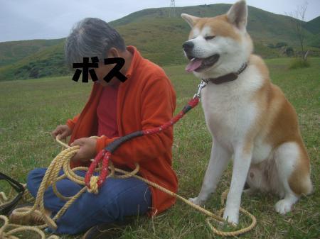 CIMG3960_convert_20121029155946.jpg