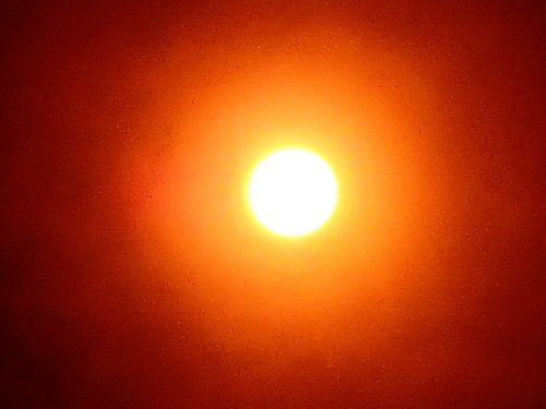 金星太陽面通過