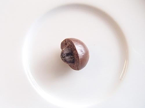 コーヒービーンズチョコ1