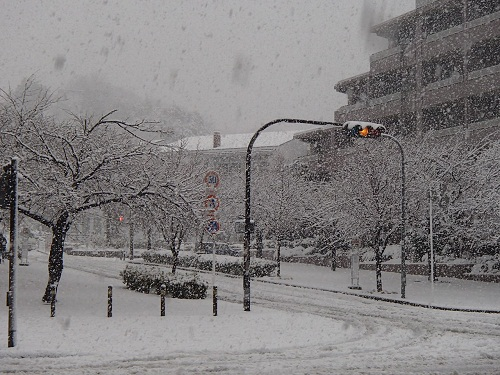 雪 (4)