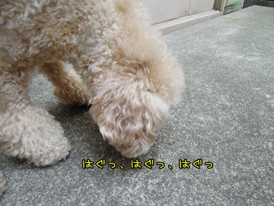 20120615-08.jpg