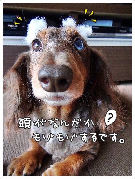 0920_01.jpg