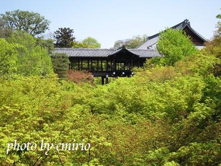 0418京都2