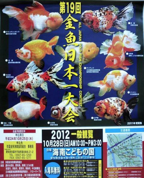 2012 金魚日本一大会
