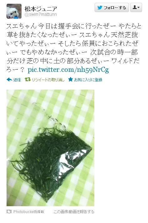 Twitter   swim7mattunn  スエちゃん今日は??-200158