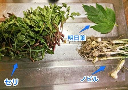 image_20130418184710.jpg