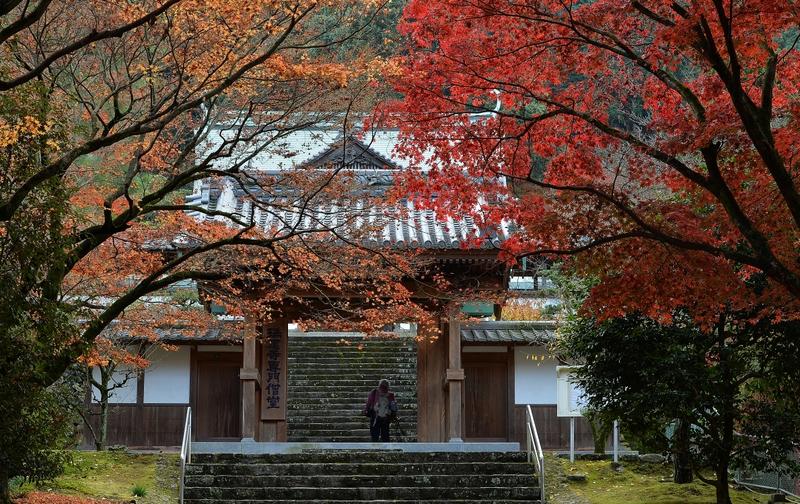 瑞応寺 (新居浜市)