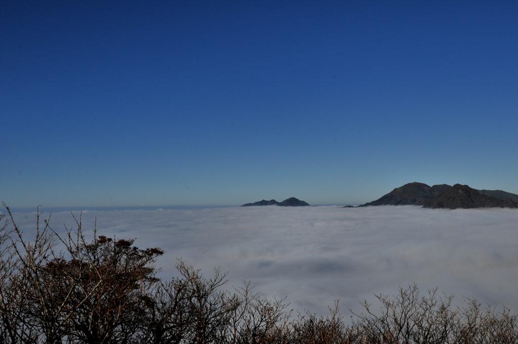 瓶ヶ森林道沿いの雲海