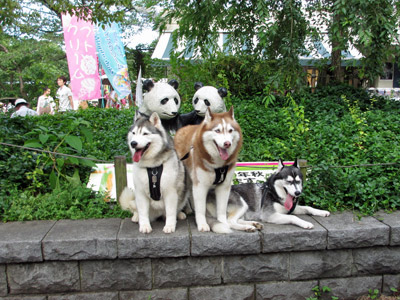nana家の三姉妹
