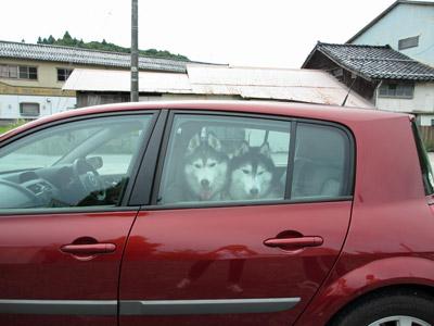 車で待機中