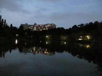 夕暮れの井の頭公園