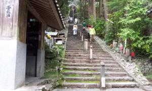20121110_154922.jpg