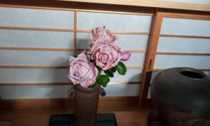 20121207_091504.jpg