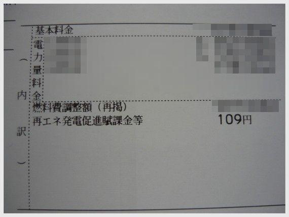 1071_PANA.jpg