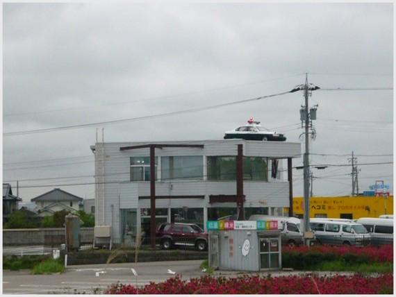 201256.jpg